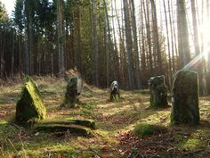Stone Circle S in Scotland | ... track down the 4,000 year old stone circle at Glassel, near Banchory
