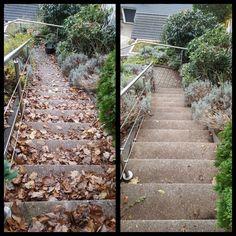 Treppen beruhigt im Garten begehen:-) #treppe #garten #laub #sauber #gärtnergebraucht #rösrath #bergisch