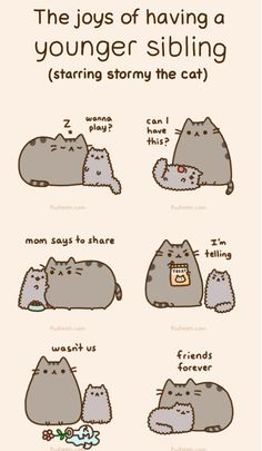 Pusheen: Siblings (Starring Stormy)
