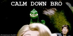 The perfect CalmDownBro Tangled Pascal Animated GIF for your conversation. Discover and Share the best GIFs on Tenor. Walt Disney, Disney Tangled, Disney Love, Pascal Tangled, Disney And Dreamworks, Disney Pixar, Funny Images, Funny Pictures, Funny Gifs