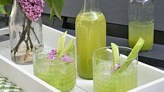 Rebarborová limonáda Foto: