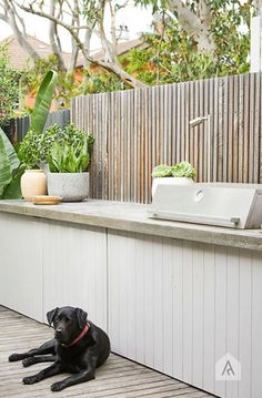 20 Excellent Private City Garden Design Ideas With Beach Vibes Outdoor Lounge, Outdoor Rooms, Outdoor Gardens, Outdoor Decor, Outdoor Bars, Outdoor Showers, Outdoor Patios, Outdoor Plants, Outdoor Storage