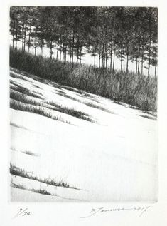 Shigeki Tomura was born in 1951 in Hachinohe, Japan. He participated in the Kokuga Association exhibitions He is devoted to printmaking, drypoint and etching, in particular. Although Tomura makes beautiful drawings and watercolors, the line Intaglio Printmaking, Davidson Galleries, End Of Winter, Beautiful Drawings, Japanese Artists, Tree Art, Artist At Work, Printable Art, Landscape Paintings