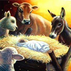 Simon Taylor-Kielty . . . Even the animals worshiped Him . . they knew . . .