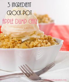 3 INGREDIENT CROCK POT APPLE DUMP CAKE.  Super easy to make and it's amazingly delicious.  Dump it all into your crockpot and walk away.
