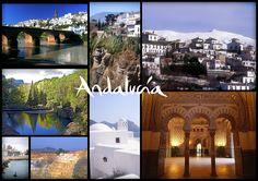 La Semana Santa andaluza un gran reclamo para el sector tco de Andalucía.