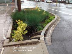Jardins de chuva auxiliam na drenagem de calçada. (Foto: Glen Dake)