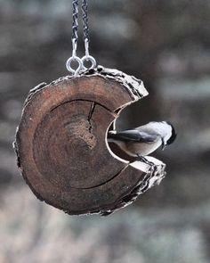 Feed the birds! Podem reciclar un tronc per fer una caseta d'ocell