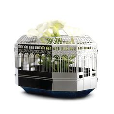 house-plant-growing-gift-ideas.jpg