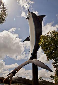 The Big Marlin Cairns Tropical North Queensland Australia Travel, Western Australia, Queensland Australia, Cairns, Unusual Buildings, Roadside Attractions, Great Barrier Reef, World's Biggest, Tasmania