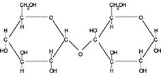 Proteins- proteins are polymers to amino acids. The