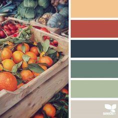 Explore Design Seeds color palettes by collection. Colour Pallette, Color Palate, Colour Schemes, Color Patterns, Color Combos, Autumn Color Palette, Design Seeds, Color Concept, Colour Board