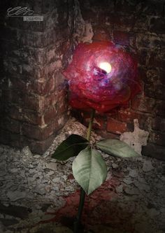stephen king the dark tower roses | deviantART: More Like Diaper Punishment Tonight by ~AdultBabyDiaperBoy