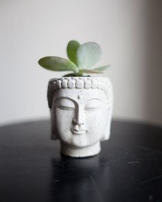 Two Buddha Head Planters 1 and 2 by brooklynglobal on Etsy