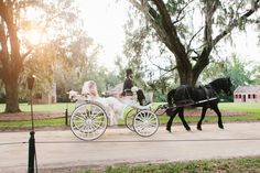 bride arrives in horse and carriage - Google Search