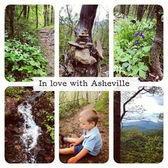 In love with Asheville (photo by rawmamanature) :)
