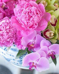 "467 Likes, 18 Comments - Giselle Bassi (@la_table_de_giselle) on Instagram: ""Bom dia! Uma linda semana a todos! #flowerslovers #flowerpower #latabledegiselle"""