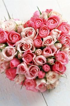 65 Roses, Cystic Fibrosis - Cystic Fibrosis Research,Inc. 2672 Bayshore Parkway,Suite 520 Mountain View,CA. 94043 TAX DEDUCTIBLE DONATIONS! HELP FIND A CURE~♥.
