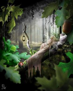 Fairy N Pixie Photo: This Photo was uploaded by hoastB. Find other Fairy N Pixie pictures and photos or upload your own with Photobucket free image and . Forest Creatures, Magical Creatures, Fantasy Creatures, Forest Fairy, Fairy Land, World Of Fantasy, Fantasy Art, Fairy Dust, Fairy Tales