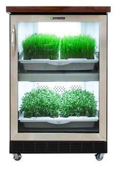 The Urban Cultivator Residential is an all-in-one indoor home garden. You get 365 days of perfect growing conditions for all of your favorite herbs, microgreens, and vegetables