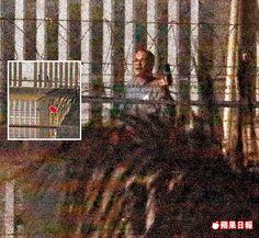 劫獄囚犯凌晨4時許與警方數度駁火後,舉起短槍自盡倒地(箭頭處)。杭大鵬攝