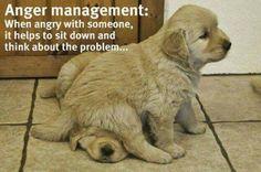 Anger Management...