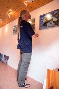 Kranich Bilder im Natureum Darßer Ort | Mike Peters vom Deutsches Meeresmuseum hängt die Drucke der Kranich Aquarelle (c) FRank Koebsch