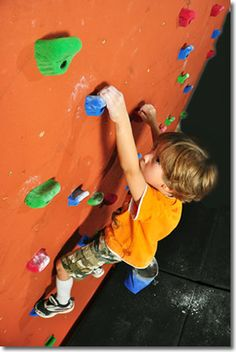 The holds have been amazing. Tristan is using our small bouldering wall almost every day now and wants to make it wider.  Kids Climbing Wall