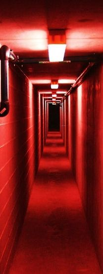 Car park walkway underneath the Melbourne Museum, Victoriathis would be spooky Dark Red, Red And White, Melbourne Museum, Red Images, Bing Images, I See Red, Red Light District, Simply Red, Red Rooms