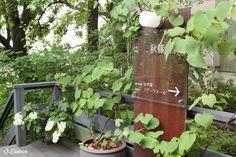 くるみの木のオーナー石井由起子さんが作られた、「秋篠の森」 その森の中に佇む、「Hôtel ノワ・ラスール」は 建築家の中村好文氏が手がけた、2部屋だ...