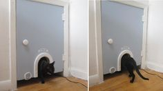 A kitty cave (for hiding the litter box!) The Cat Hole. Love the look of this! #litter #LitterBox #cat