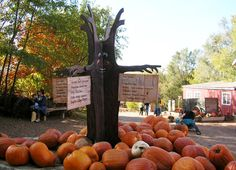 Vala's Pumpkin Patch - Gretna, Nebraska