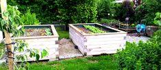 Hochbeet Bau | Anleitung zum Bau eines Hochbeets | Hochbeet Bauplan