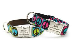Peace Signs Dog Collar with Personalized Buckle – Bark Label