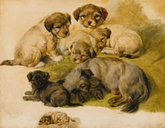 CIRCLE OF SIR EDWIN HENRY LANDSEER, STUDY OF A TERRIER AND PUPPIES