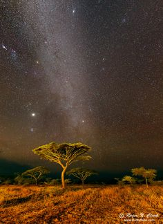 image ndutu.night.c02.14.2013.C45I2514-25.g-900.jpg is Copyrighted by Roger N. Clark, www.clarkvision.com