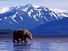 Larsen Bay, An Alaskan Coastal Village