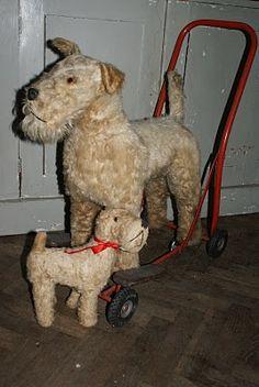 Wire Fox Terrier !