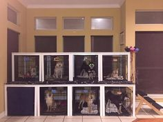 (IKEA kitchen tables converted to canine condo) foster dog crate training Dog Grooming Shop, Dog Grooming Salons, Dog Grooming Business, Pet Shop, Dog Kennel Designs, Diy Dog Kennel, Dog Kennels, Kennel Ideas, Ikea Dog