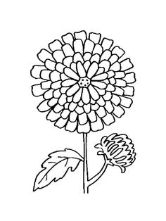 Draw Flowers, Marigold, Coloring Pages For Kids, Wallpaper, Drawings, Free, Animals, Coloring Pages For Boys, Animales