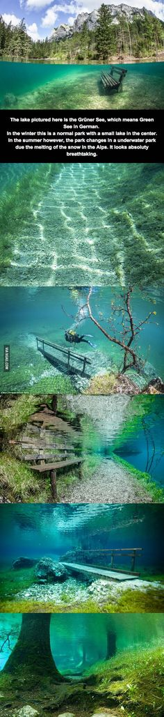 "In Germany there is a park called ""Grüner See"" which is normal in Winter but goes underwater during Summer due to the snow meltdown. It must be amazing to visit in this last period! I'd learn scuba diving just to do it..."