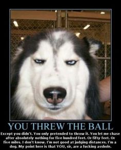 You threw the ball....