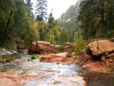 Oak Creek Canyon, near Sedona, Arizona Oak Creek Canyon Arizona, Sedona Arizona, Vacation Destinations, Vacation Spots, Spring Water, Wonders Of The World, Places To Travel, Places Ive Been, Nature