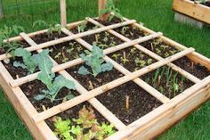 square foot garden (SFG) is that you use less space, have less weeds, use less water, etc.but still reap the benefits