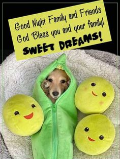 Good Night Family, Good Night Sleep Tight, God Bless You, Sweet Dreams, Blessed, Phone, Telephone, Mobile Phones
