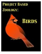 FREE CLASS VIDEO! Project Based Zoology: Birds Class #3