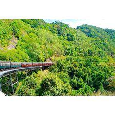 【pingheyang】さんのInstagramをピンしています。 《{Kuranda Cairns, Australia} 森の中へ . 今週みたいな天気だとやはり緑の明るい写真で元気つけたいですね✨✨ . 去年の今頃、オーストラリアのケアンズに行って、森の中へレトロな列車で入りました . 窓から緑がいっぱい見えて、この後、熱帯雨林と思うと、わくわくしてきた . #緑#列車#レトロ#旅行#海外旅行#キュランダ#オーストラリア#森#熱帯雨林#summer#trip#travel#green #l4l #旅拍 #澳大利亚》 Cairns, Vineyard, Australia, River, Instagram Posts, Outdoor, Outdoors, Vine Yard, Vineyard Vines