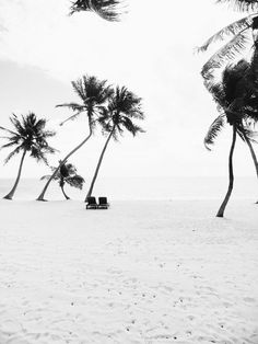 #floridakeys | Mark Weinberg - Photographer - NYC | VSCO Grid