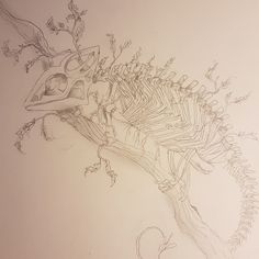 Chameleon, Skull, Crafts, Art, Drawing S, Photo Illustration, Art Background, Manualidades, Chameleons