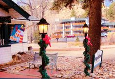 Estes Park, Ladder Decor, Colorado, Home Decor, Aspen Colorado, Decoration Home, Room Decor, Skiing Colorado, Home Interior Design